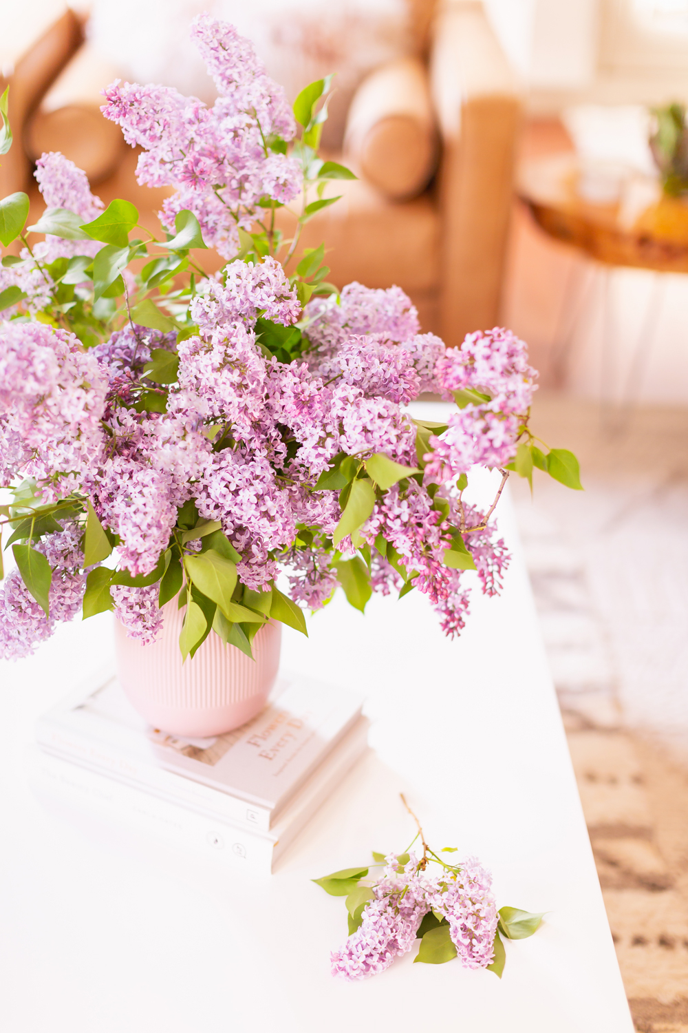 An oversized lilac bouquet and single lilac bough on a white coffee table in JustineCelina's light and airy mid century meets boho modern living room | DIY Lilac Flower Arrangement | How to Forage Lilacs | How to Prolong Lilac Vase Life | How to Arrange Lilacs | Fresh Lilac Flower Bouquet | Extremely Pretty Lilac Arrangement | Purple Lilac Arrangement | How to Cut Lilacs from a tree or bush | Calgary Creative Lifestyle Blogger // JustineCelina.com