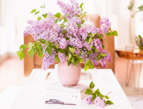How to Create a Lilac Bouquet | An oversized lilac bouquet and a pair of clippers on a white coffee table in JustineCelina's light and airy mid century meets boho modern living room | DIY Lilac Flower Arrangement | How to Forage Lilacs | How to Prolong Lilac Vase Life | How to Arrange Lilacs | Fresh Lilac Flower Bouquet | Extremely Pretty Lilac Arrangement | Purple Lilac Arrangement | How to Cut Lilacs from a tree or bush | Calgary Creative Lifestyle Blogger // JustineCelina.com