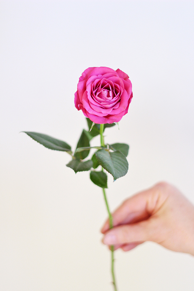 All About Roses   A Single Precious Moments Rose // JustineCelina.com x Rebecca Dawn Design
