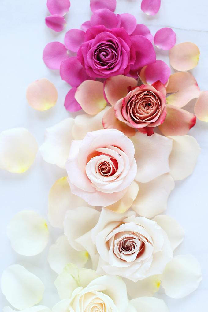All About Roses   Romantic Rose Ombre // JustineCelina.com x Rebecca Dawn Design