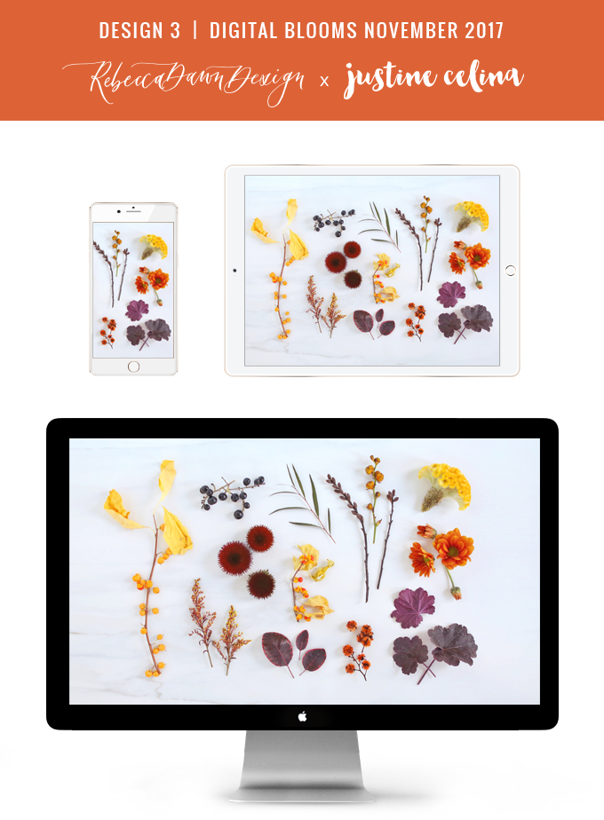 Digital Blooms November 2017   Free Desktop Wallpapers   Design 1 // JustineCelina.com x Rebecca Dawn Design