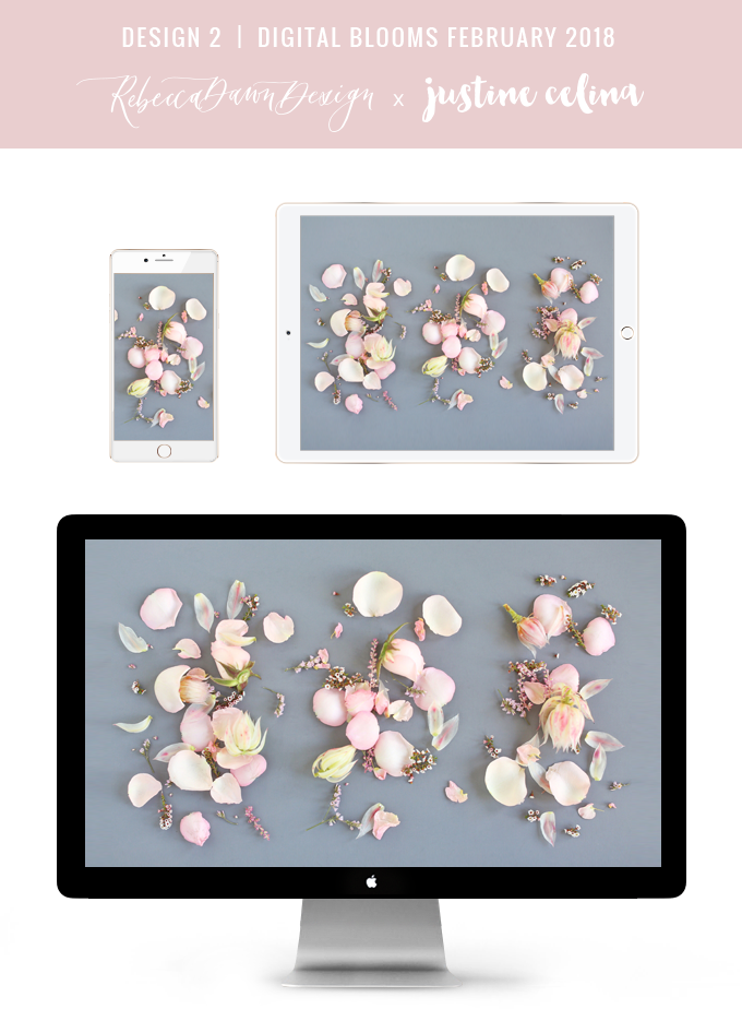 DIGITAL BLOOMS FEBRUARY 2018 | Free Blush Floral Desktop Wallpapers for Valentine's Day | Design 2 // JustineCelina.com x Rebecca Dawn Design