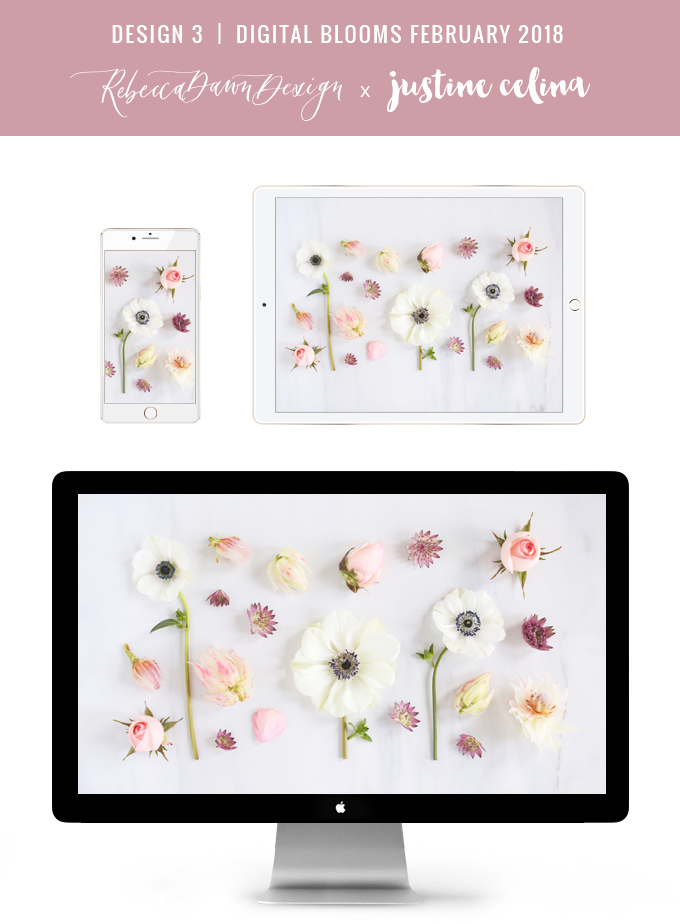 DIGITAL BLOOMS FEBRUARY 2018 | Free Blush Floral Desktop Wallpapers for Valentine's Day | Design 3 // JustineCelina.com x Rebecca Dawn Design