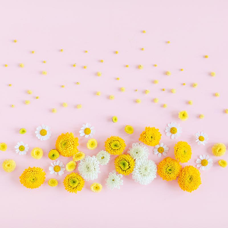 Digital Blooms May 2018   Free Pantone Inspired Desktop Wallpapers for Spring   Free Pastel Tech Wallpapers   Design 2 // JustineCelina.com x Rebecca Dawn Design