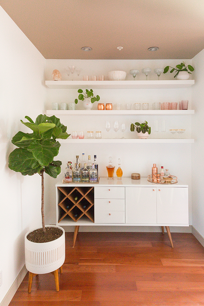 How to Select and Care For Houseplants | Fiddle Leaf Fig Care and Watering Schedule // JustineCelina.com