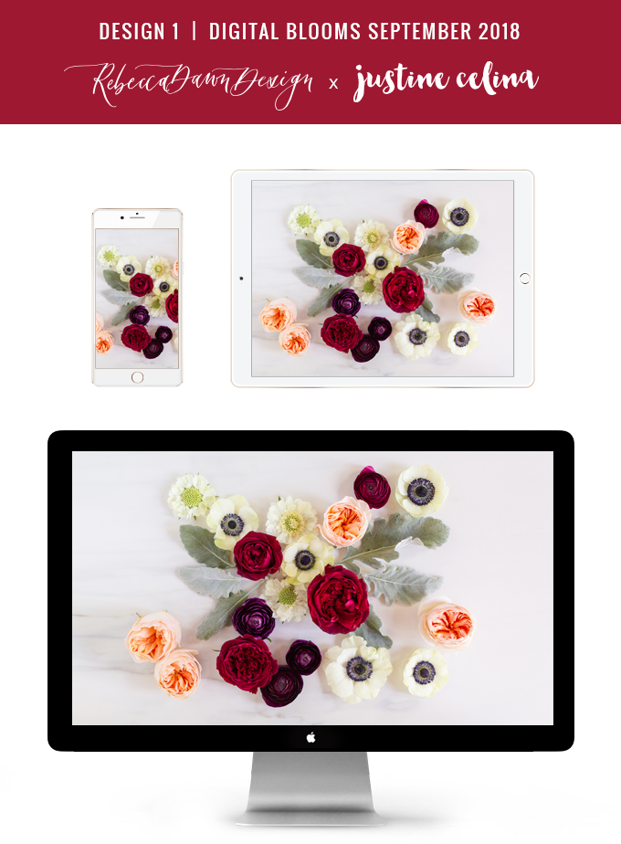Digital Blooms September 2018 | Free Desktop Wallpapers for Fall with Ranunculus, Garden Roses and Anemones | Pantone Fall / Winter 2018 Free Tech Wallpapers | Design 1 // JustineCelina.com x Rebecca Dawn Design