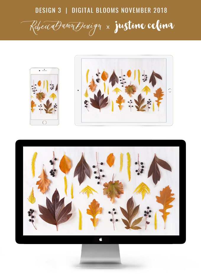 Digital Blooms November 2018 | Free Desktop Wallpapers for Fall with Mums, Thrytptomene and an array of foraged autumn leaves and berries | Pantone Fall / Winter 2018 Free Tech Wallpapers | Design 3 // JustineCelina.com x Rebecca Dawn Design