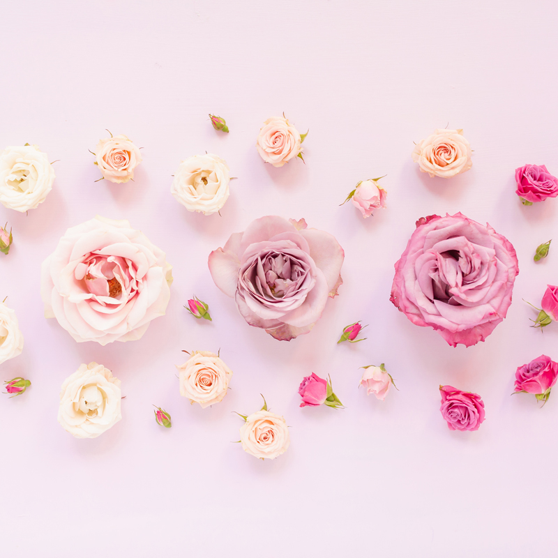 DIGITAL BLOOMS MARCH 2020 | FREE DESKTOP WALLPAPER | An ombre pastel rose FREE Desktop Wallpaper for Spring 2020 | Pink and Lavender Ombre Floral Tech Wallpaper for Spring | Pastel Pink FREE tech wallpaper Spring 2020 | Free March Flower Tech Wallpapers | JustineCelina Spring 2020 Digital Blooms | Free March 2020 Floral Desktop Wallpaper featuring Purple Haze Lavender Roses, Amnesia Lavender Novelty Roses, Mother of Pearl Roses and Spray Roses // JustineCelina.com