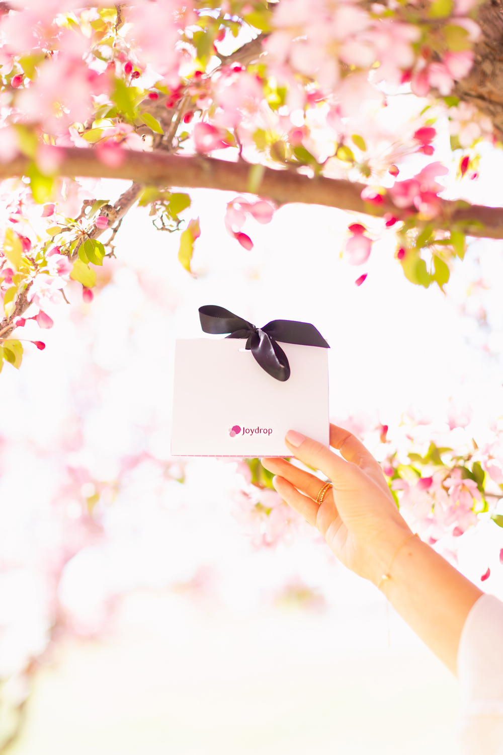 My Joydrop Calgary Jewelry Collection & $150 International Giveaway | Woman's hand holding a gift wrapped jewelry box amongst a blooming cherry blossom tree | JustineCelina's Signature Jewelry | Spring / Summer 2021 Jewelry Trends | Top Accessory Trends Spring / Summer 2021 | The Best Gold Plated Croissant Rings | Jewelry Trends Summer 2021 | Boho Jewelry Trends 2021 | The Best Gold Plated Jewelry Canada | Calgary Lifestyle and Fashion Blogger // JustineCelina.com